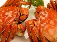 怀孕不能吃螃蟹吗?吃兔肉会导致兔唇?