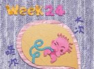 孕24周的胎教重点
